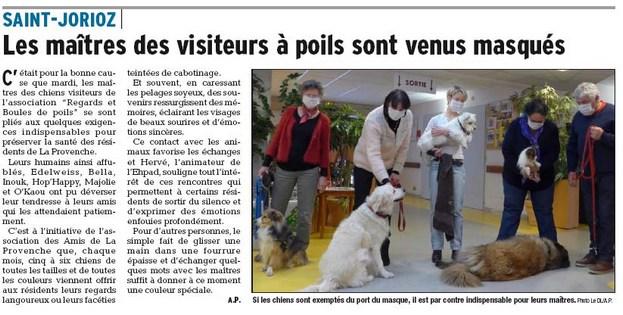 20170112_dl_chiens_provenche